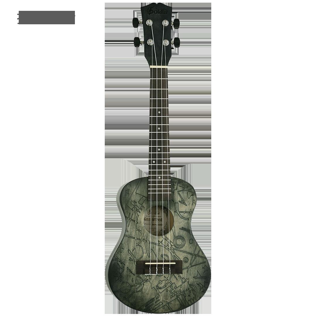 SK-2300C C03-Front